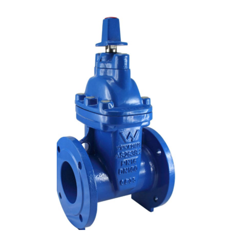 100mm Sluice valve 100mm NP16 Clockwise close SV100CC