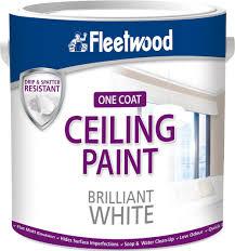 Ceiling Paint Brilliant White 2.5L