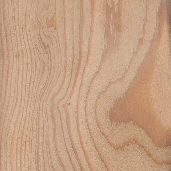 125 x 25mm Siberian Larch KD Sawfalling (Larix Decidua)