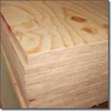 2440 x 1220 x 25mm Pine Faced Poplar Core Plywood BS EN 636-2/314-2
