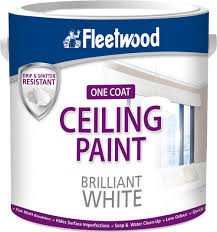 Ceiling Paint Brilliant White 5L