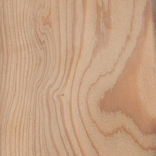 100 x 25mm Siberian Larch KD Sawfalling (Larix Decidua)