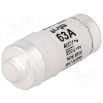 Fuse 63A D02 Gg 400VAc