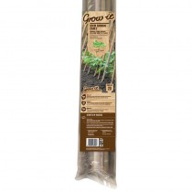 Bamboo Canes 2Ft (0.6m) Pk 20