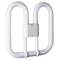 16w 2D 2 Pin Lamp