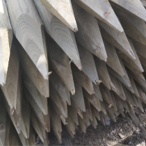 Tree Stake Treated Green  40x40x1.8M  Pointed