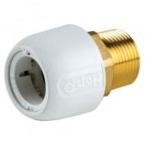 Adapt-Brass Male 3/4iBSP x 22mm Socket