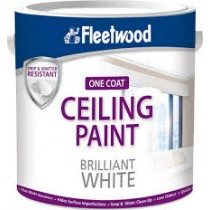 Ceiling Paint Brilliant White 5L