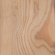 100 x 25mm Siberian Larch KD (Sawfalling).